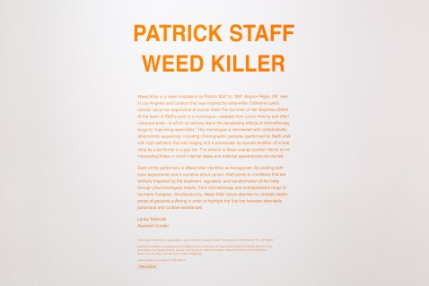 Installation view of Patrick Staff: Weed Killer, March 12–July 3, 2017 at MOCA Grand Avenue, courtesy of The Museum of Contemporary Art, Los Angeles, photo by Zak Kelley.