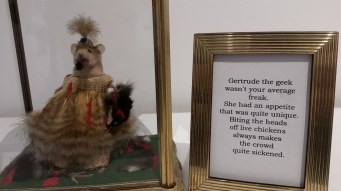 """Gertrude the Geek"" by Marxidermy. Sacrificial Lamb. Lethal Amounts Gallery. Photo Credit Jennifer Susan Jones"