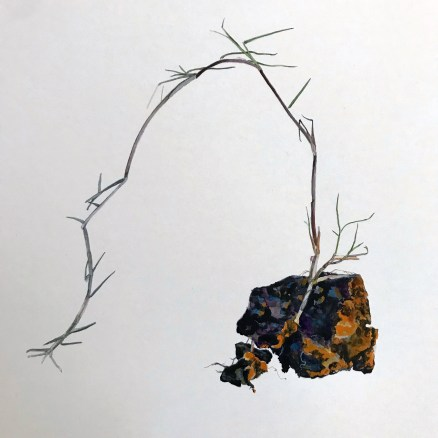 Andrea Bersaglieri, Weed with Clot; Image courtesy of the artist