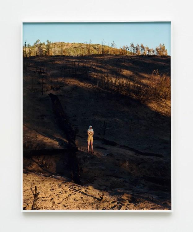 Torbjørn Rødland, SoCal Muspelheim, The Beatitudes of Malibu, David Kordansky Gallery; Image courtesy of David Kordansky Gallery