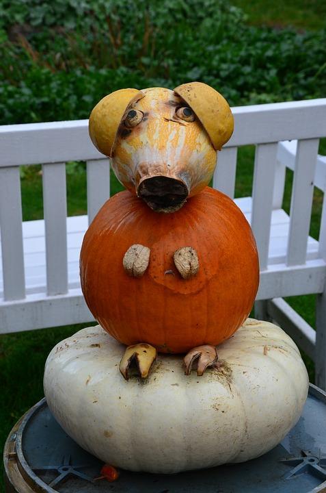 Halloween Pumpkin Carving Ideas   Cute Pig