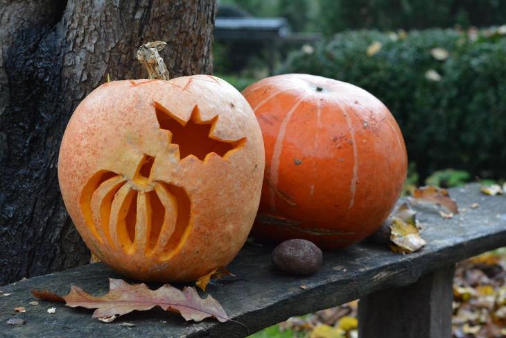 Halloween Pumpkin Carving Ideas   Pumpkin in a Pumpkin
