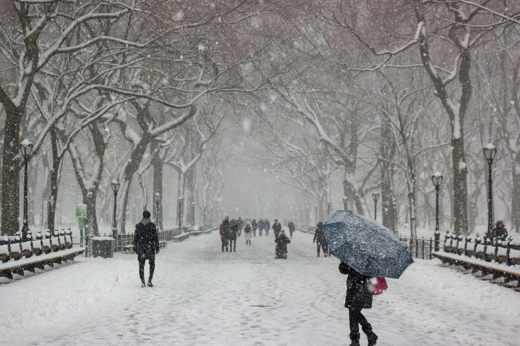 Falling Snow in New York Park Winter Scene