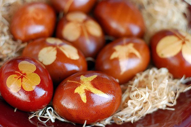 Burnt Orange Botanical Painted Easter Eggs