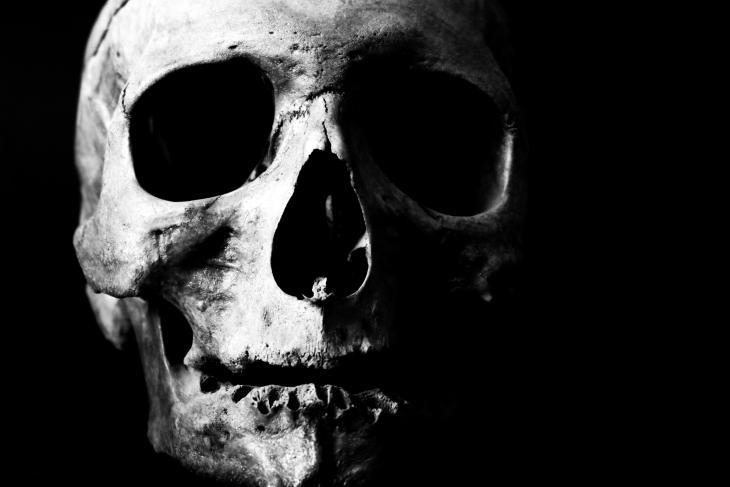 Black and White Skull Halloween Printable Art