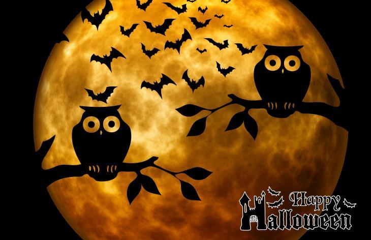 Happy Halloween Owls Printable