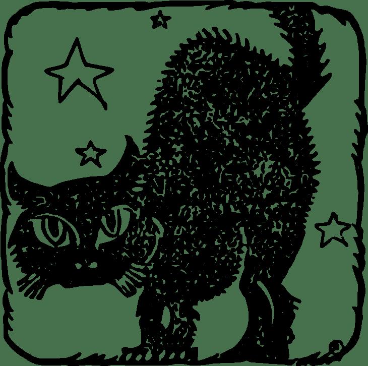 Starry Black Cat Halloween Printable