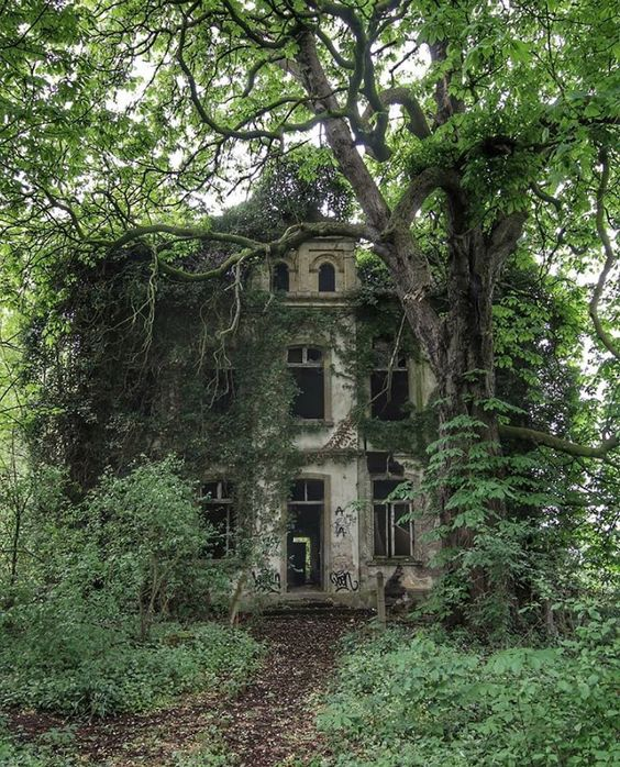 Abandoned and Overgrown Home