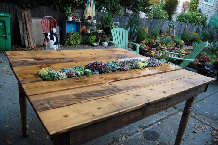 DIY Succulent Garden Pallet Table