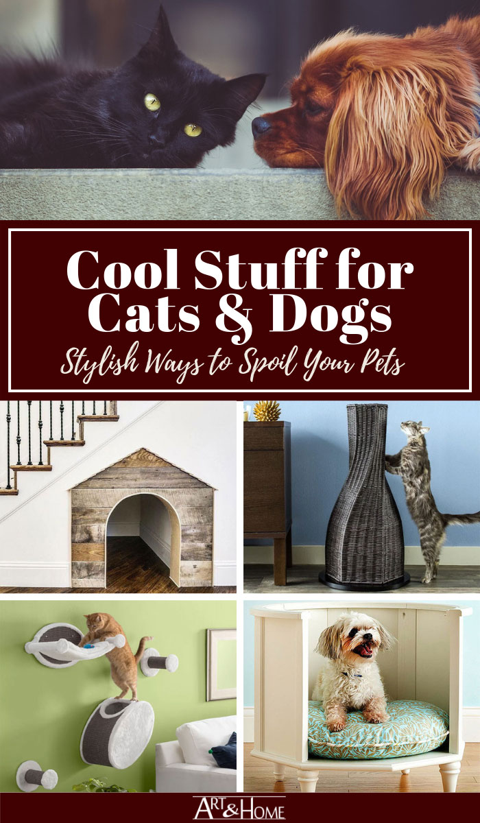 Decorative Pet Products & Design Ideas to Spoil Your Pet in Style