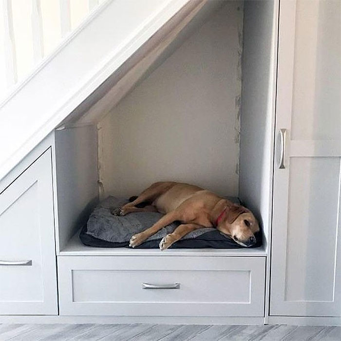 Dog Bed Built In Under Stairs