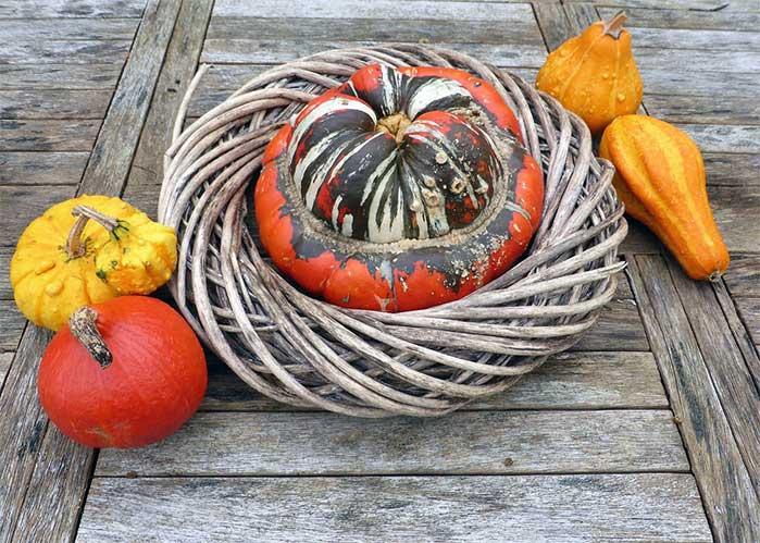 Gourd Wreath DIY Decor