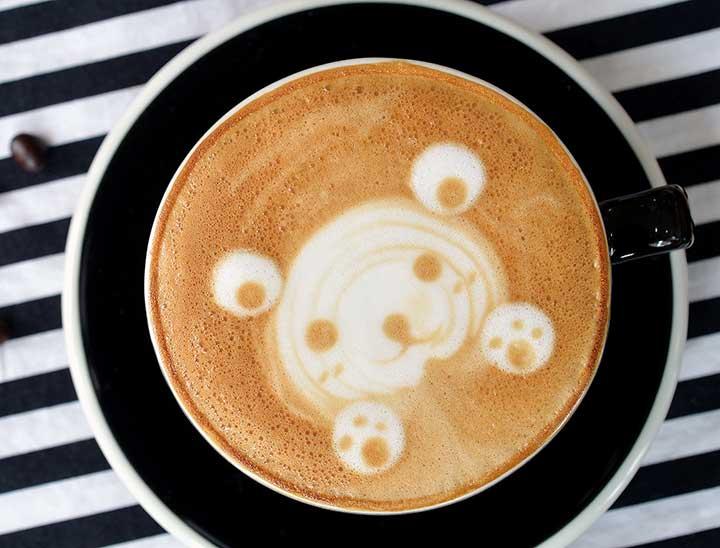 Teddy Bear Latte Art
