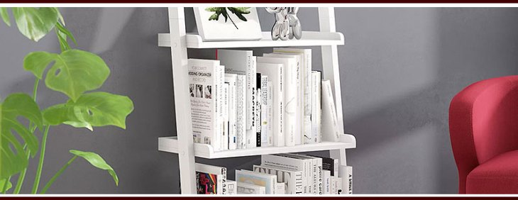 Unique Ladder Shelves