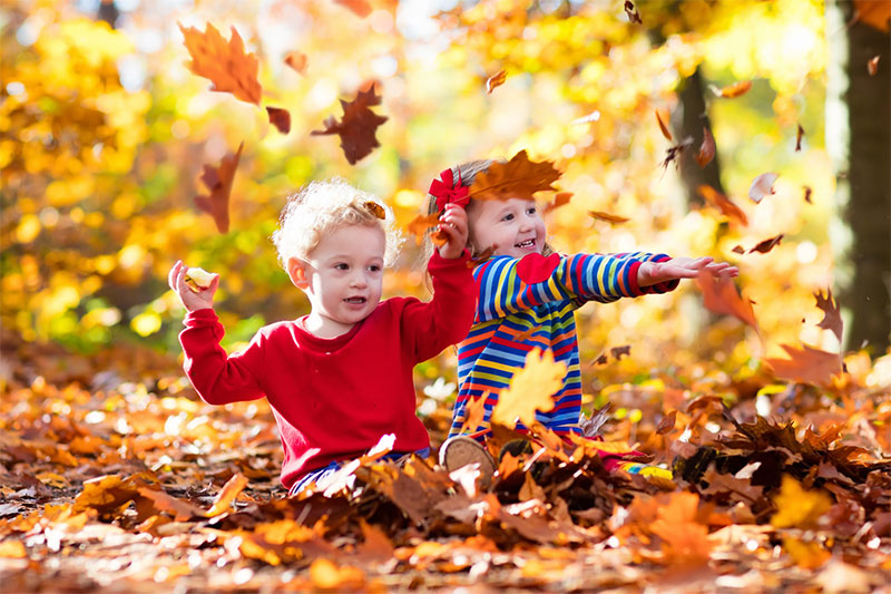 Play with the Fallen Leaves