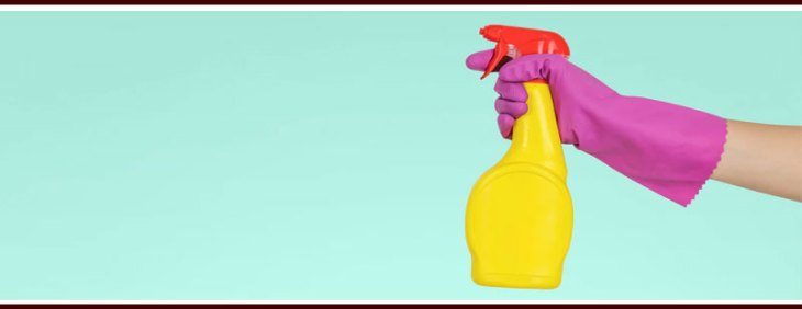 Cleaning Tools |  Specialized Cleansers