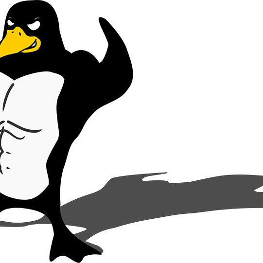 Bodybuilding Penguin