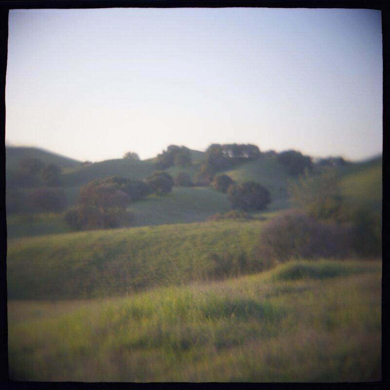 05 Oak Hillside Daniel Grant Photographic Print
