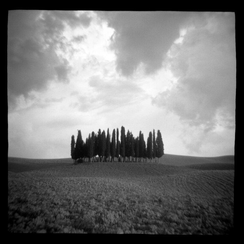 Cypress Hill Daniel Grant Toy Camera Photography