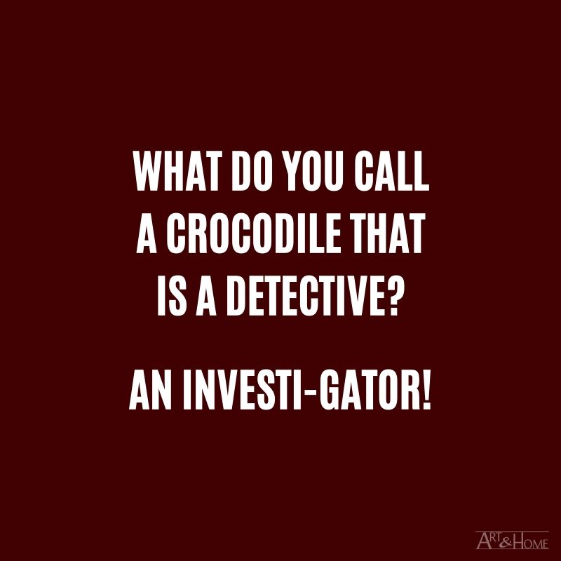 What do you call a crocodile that is a detective? An investi-gator!
