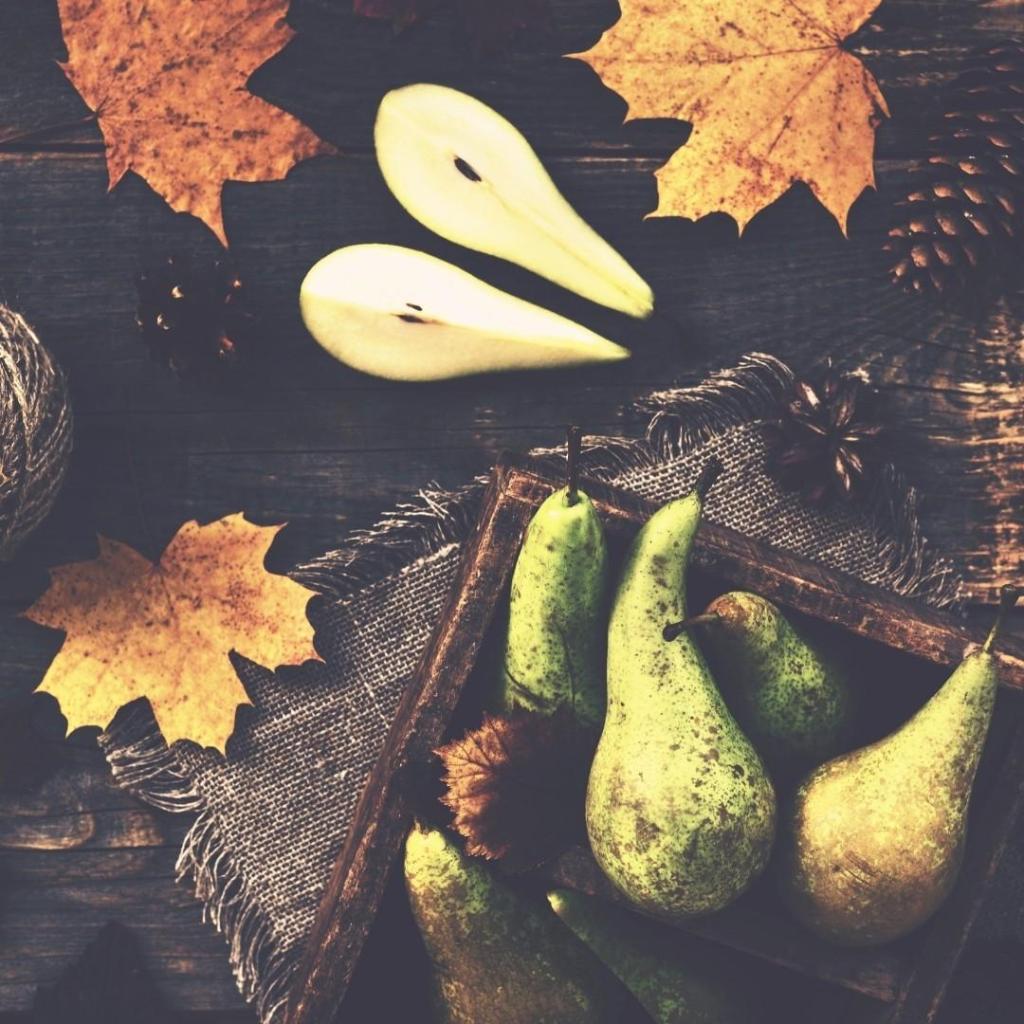 Fall Pears Decor