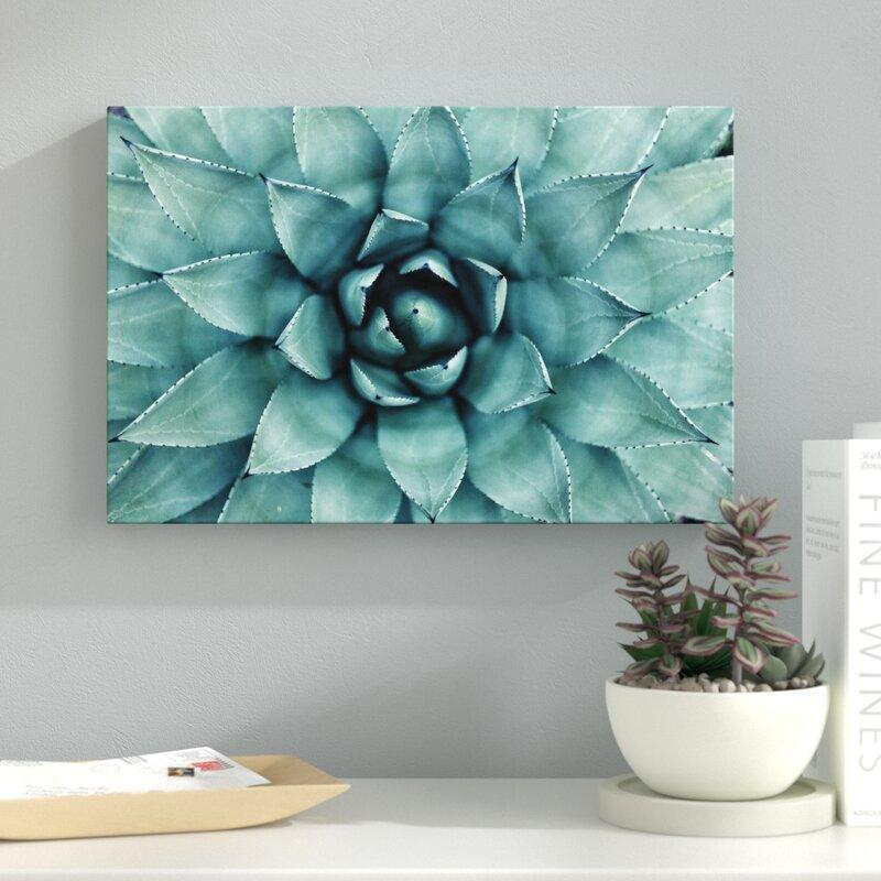 Turquoise Succulent Wrapped Canvas Photograph