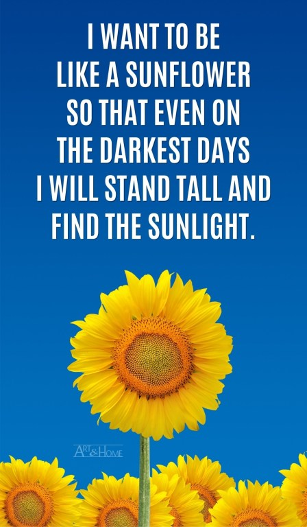I want to be like a sunflower so that even on the darkest days I will stand tall and find the sunlight.