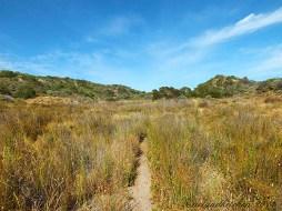 Coorong-Nationalpark 16
