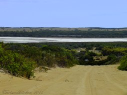 Coorong-Nationalpark 4