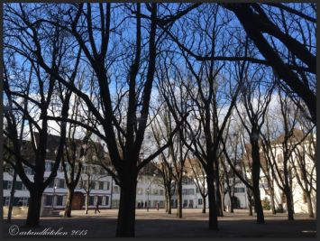 Basel Walking Tour January 2015 _ Münster square