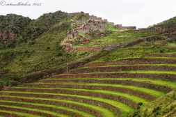 Sacred Valley (3)