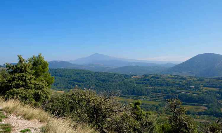 View of Mont Ventoux from the Dentelles de Montmirail