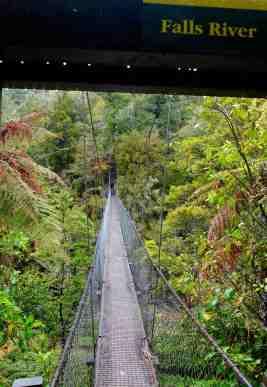 Swing bridge on coast walk