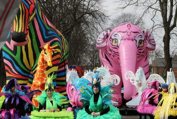 Saint Patrick's parade 2016 Ireland, Dublin Zoo