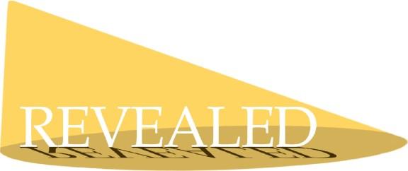 Revealed Emerging Arist logo