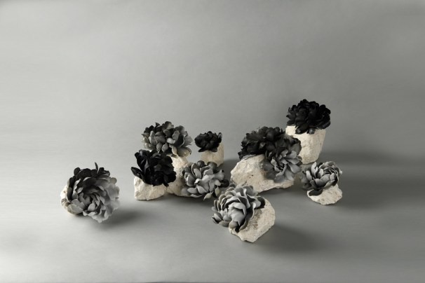 dimensions vary, smoke fired, porcelain, native clay, 2017