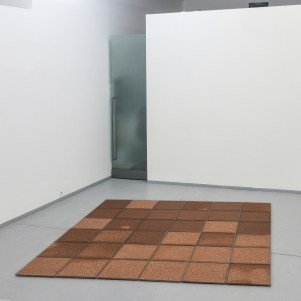 """Janiszów"" is an installation mediating the process of spontaneous creation of a plastic drawing emerging with the drying of drifting mud, which happens right during exhibition. Drifted red ferrousmud is organized into 36 glass frames measuring 50x50cm, which are further composed into a square net with an edge of 3m. The goal is to bring the natural process itself into the gallery space. The viewer can repeatedly visit the gallery to see individual states of ongoing change."