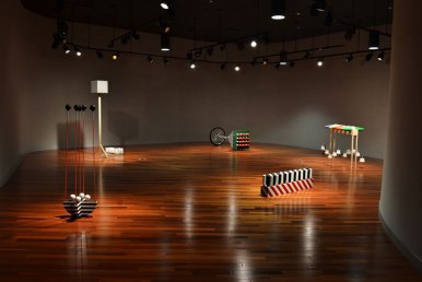 """Installation View of """"Aberrant"""" at Howard County Community College"""