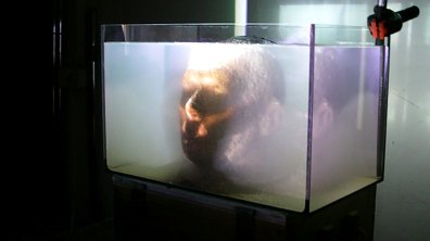 still from video installation, 2013