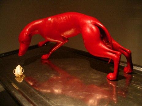 2005, surgery table, skull, leather, taxidermist maniken, porcelain