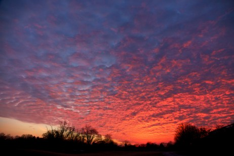 blanket stratus sunset