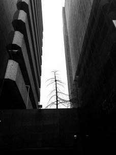 JoburgB&W12_CHaith_photostory_110515