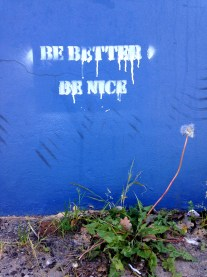 Be Better or Be Nice