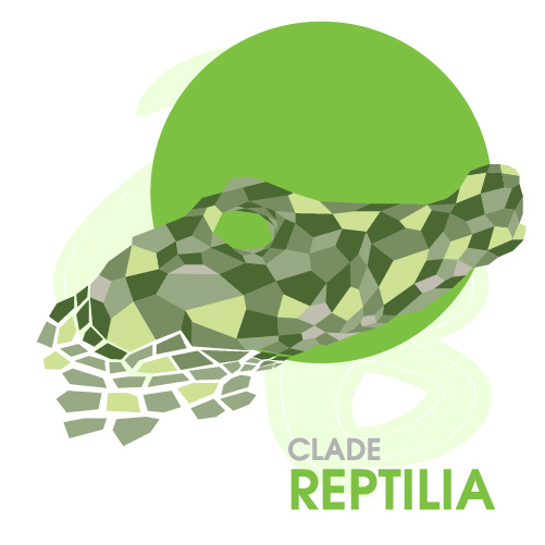 Clade Reptilia