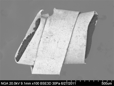 SEM image of beaten-and-cut gilt metal strip wound around silk core