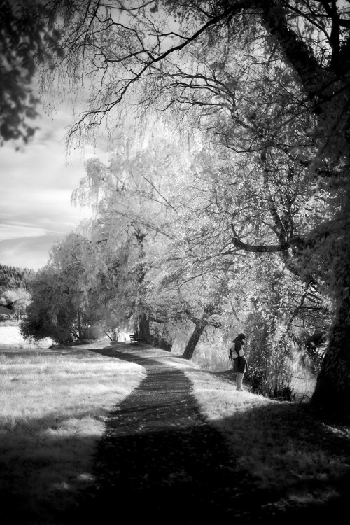 d800 infrared autumn artborghi