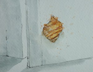 Snail on my door!
