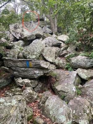 Hawk Mountain Sanctuary hike