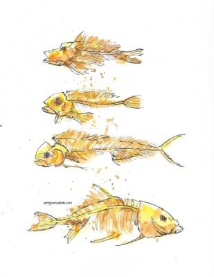 Fish skeletons