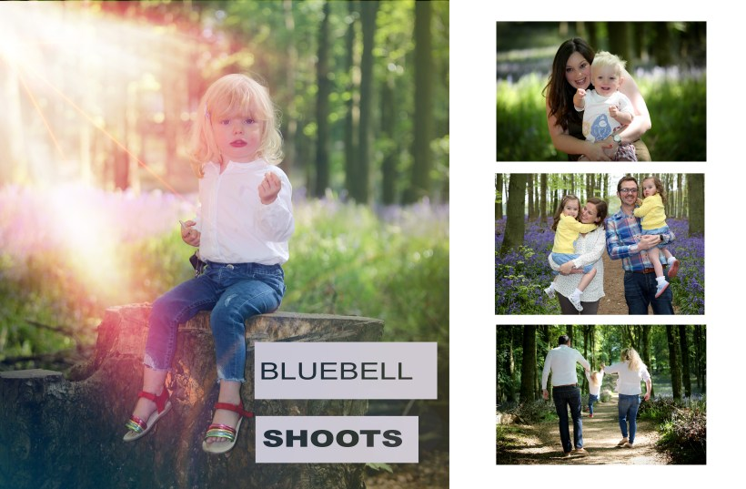 ArtbyClaire Portrait Photography at the bluebell woods Ashridge